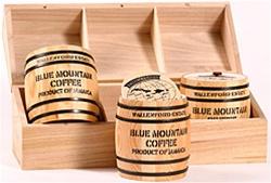 blue mountain beans in barrels