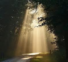 monday morning sunshine